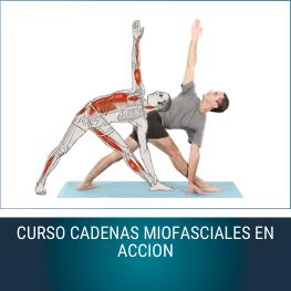 Curso Cadenas Miofasciales en Acción